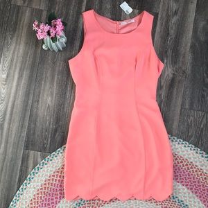 NWT Boutique Corral Apricot Scalloped Dress Med